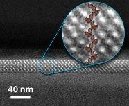 Brinker Nanostructures