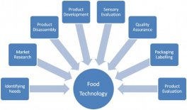Food Industry: Disruptive Emerging Technologies