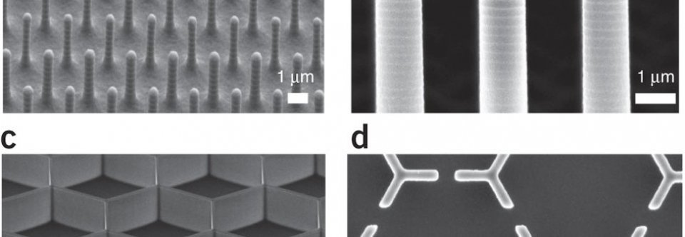 Engineering hierarchical nanostructures by elastocapillary Self Assembly