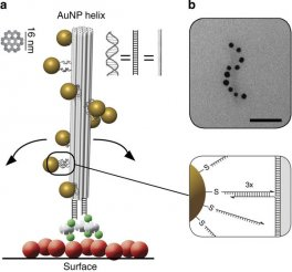 Surface-bound chiral plasmonic nanostructure.