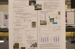 Application of platinum nanoparticles