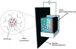 Electrochemical Deposition of platinum nanoparticles