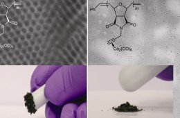 Magnetic carbon nanostructures in medicine