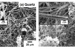 Natural Fibers nanocomposites