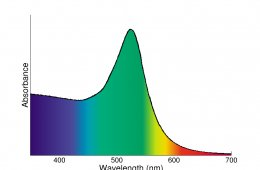 Platinum nanoparticles absorption Spectrum